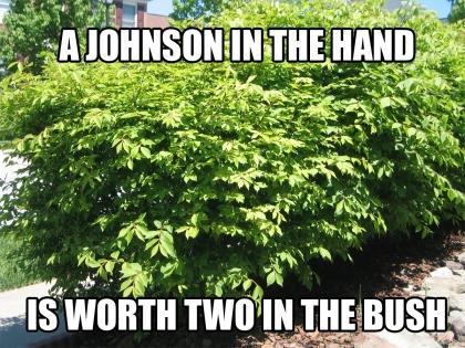 johnson0001